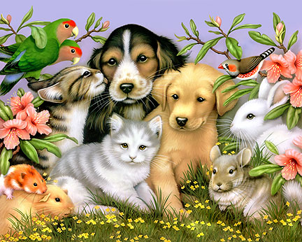There are many different types of animals in the world. Many animals ...